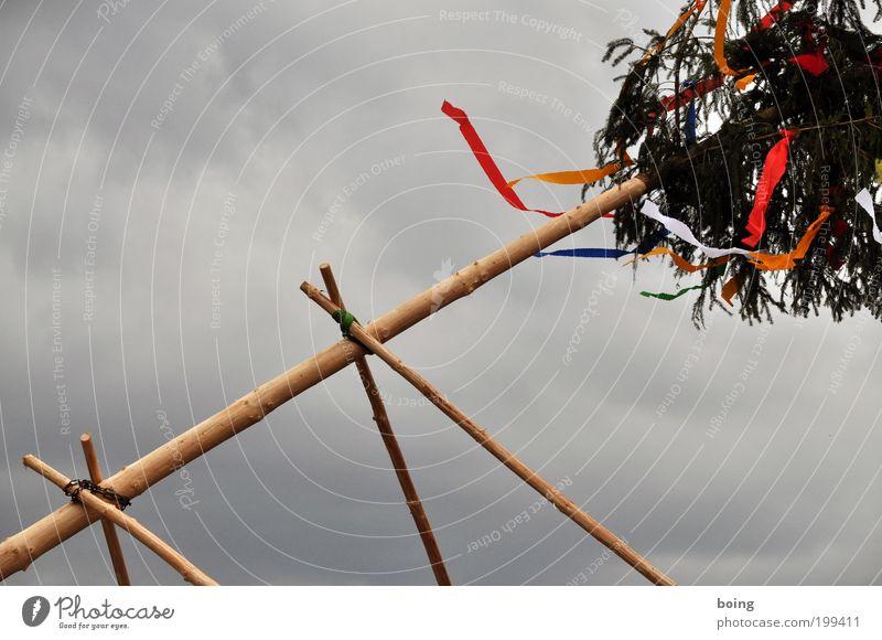 Ende April in Bayern Feste & Feiern Veranstaltung Kultur Kraft Tatkraft Tradition Zusammenhalt Maibaum Dekoration & Verzierung aufstellen Maitanz aufrichten