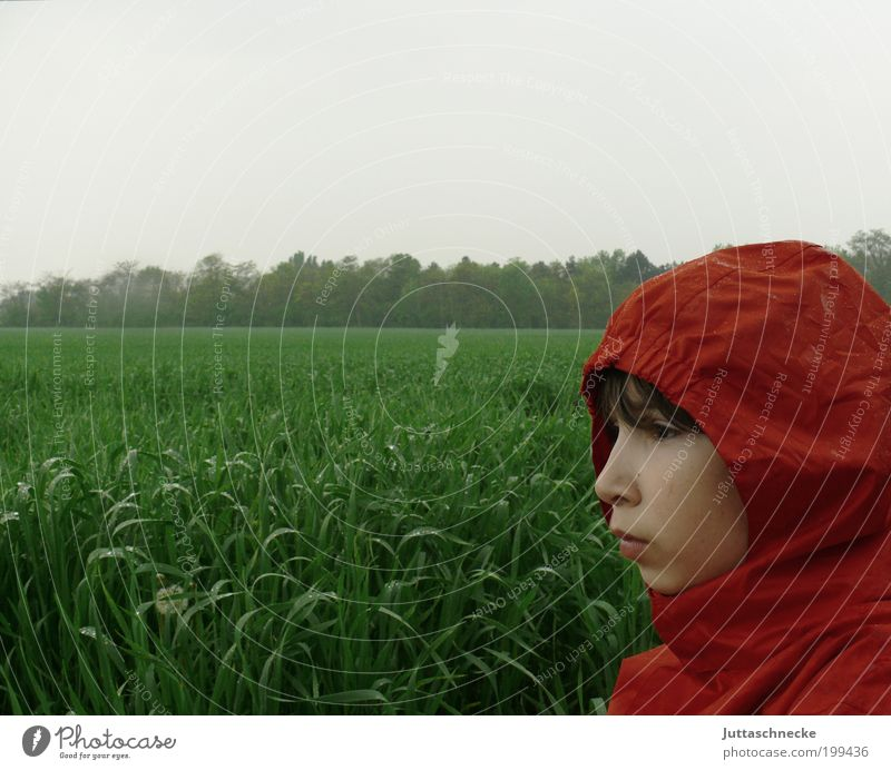 Rotkäppchen im Regen Mensch Kind grün rot Einsamkeit Junge Herbst Wiese Frühling Kopf Feld warten nass Kindheit Jacke