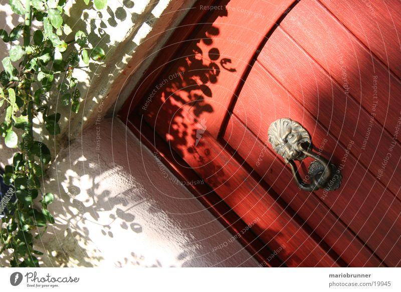 red_door rot Holz Architektur Tür Löwe Katze klopfen Türklopfer