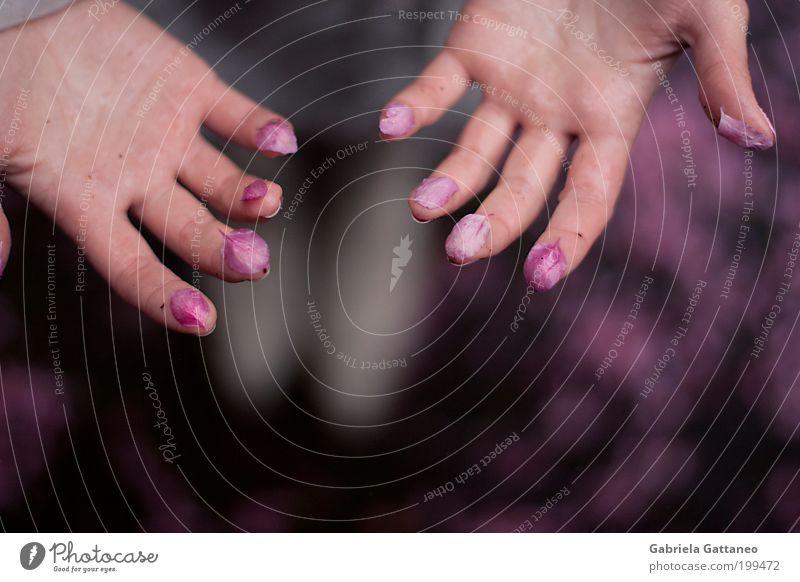 gefallen Hand schön offen rosa Haut Finger einzigartig violett berühren Kosmetik Duft zeigen nehmen Pastellton Handfläche