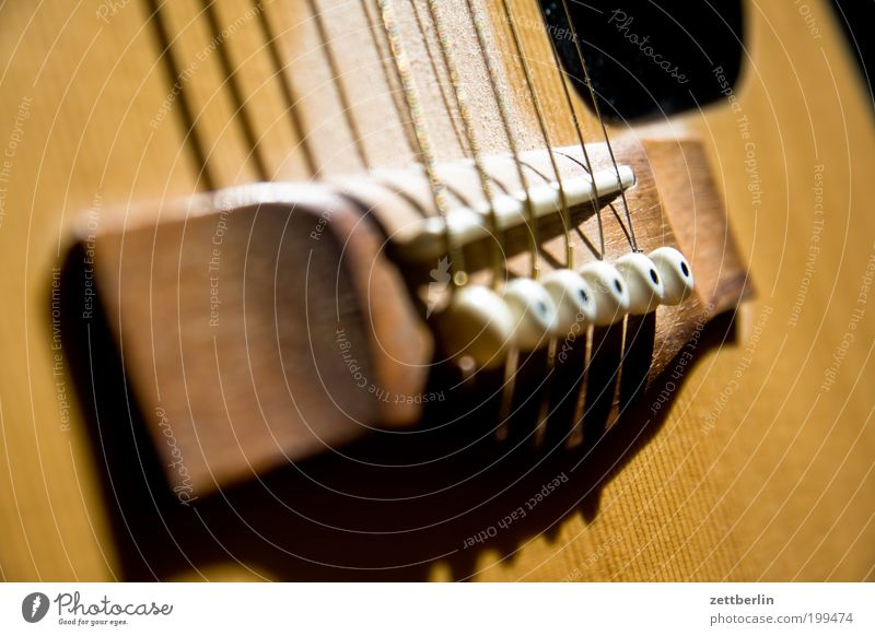 Gitarre Musik Holz Steg Spannung Musikinstrument Lied Detailaufnahme Saite akustisch Volksmusik Musik unplugged Gitarrensaite