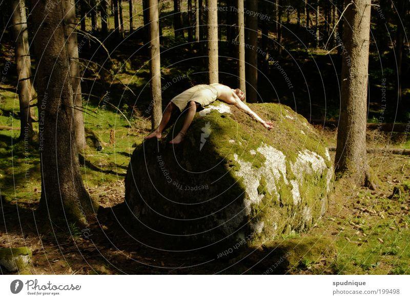 Hingehörend Mensch maskulin Junger Mann Jugendliche 1 18-30 Jahre Erwachsene Natur Sommer Schönes Wetter Wald Stein Erholung liegen schlafen grün Kraft