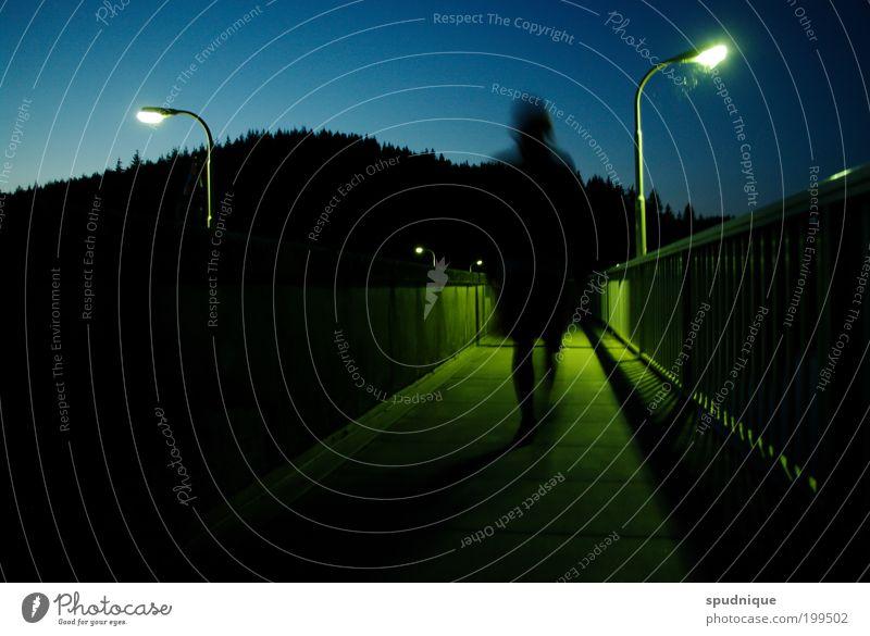 Zulaufend Mensch 1 Landschaft Wolkenloser Himmel Sommer Wald Brücke Wege & Pfade gehen dunkel Wärme blau grün Einsamkeit Bewegung Perspektive Stadt Farbfoto