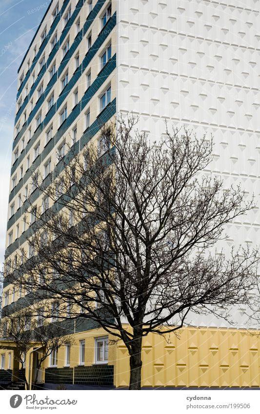 [HAL] Block Baum Stadt ruhig Leben Wand Stil Mauer Architektur Design Umwelt Hochhaus Zeit Fassade Lifestyle Perspektive ästhetisch