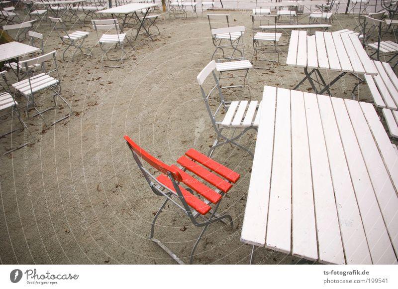 Überraschungsgast II rot Ferien & Urlaub & Reisen Sommer Strand Einsamkeit Herbst Holz Sand geschlossen Ausflug Tourismus Tisch leer Stuhl einzeln Nordsee