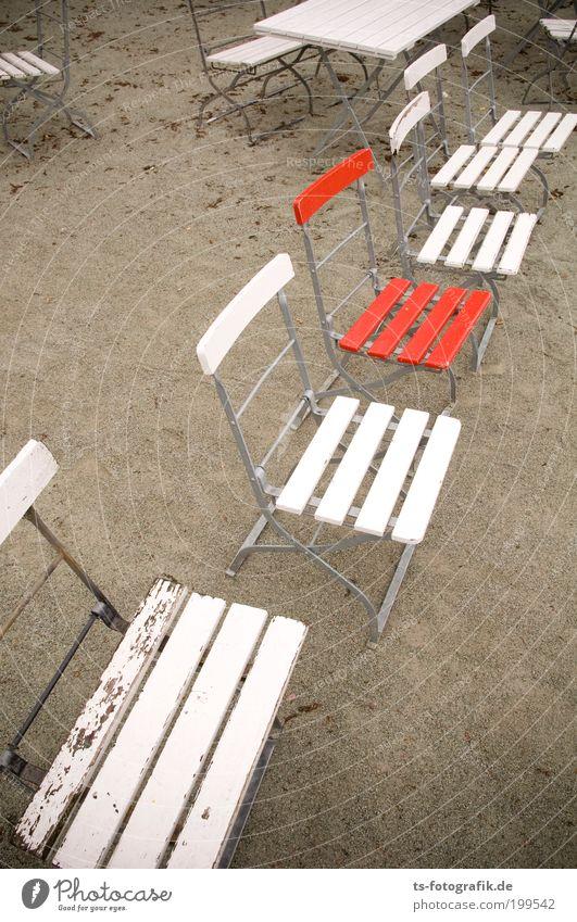Überraschungsgast III Ferien & Urlaub & Reisen weiß Sommer Erholung Einsamkeit rot Strand Herbst Holz außergewöhnlich Sand Regen Erde einzeln Tisch Ausflug