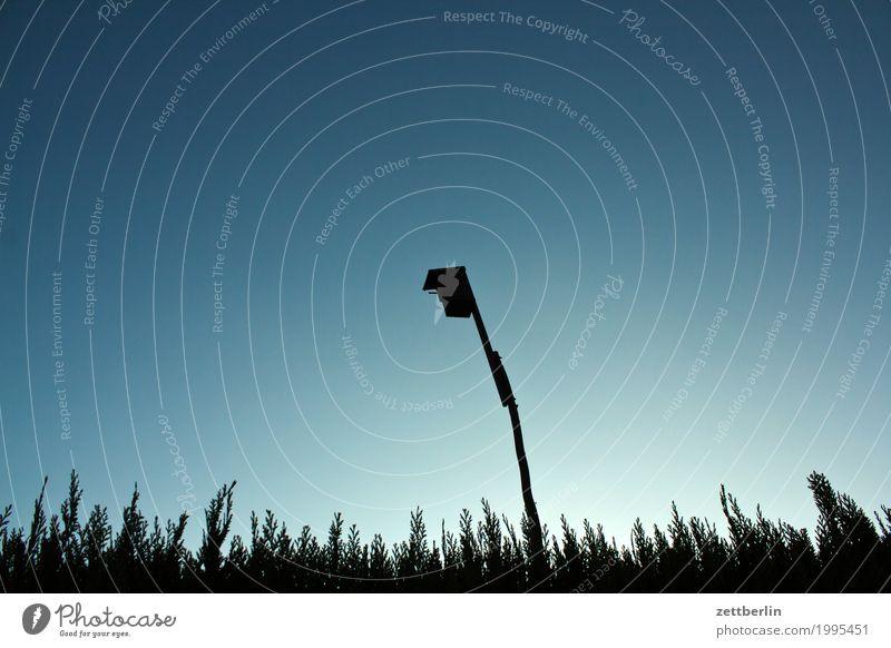 Hochhaus Futterhäuschen starkasten Nest Nistkasten hoch Stab Befestigung Frühling Hecke Himmel Natur Textfreiraum Froschperspektive Montage aufwärts