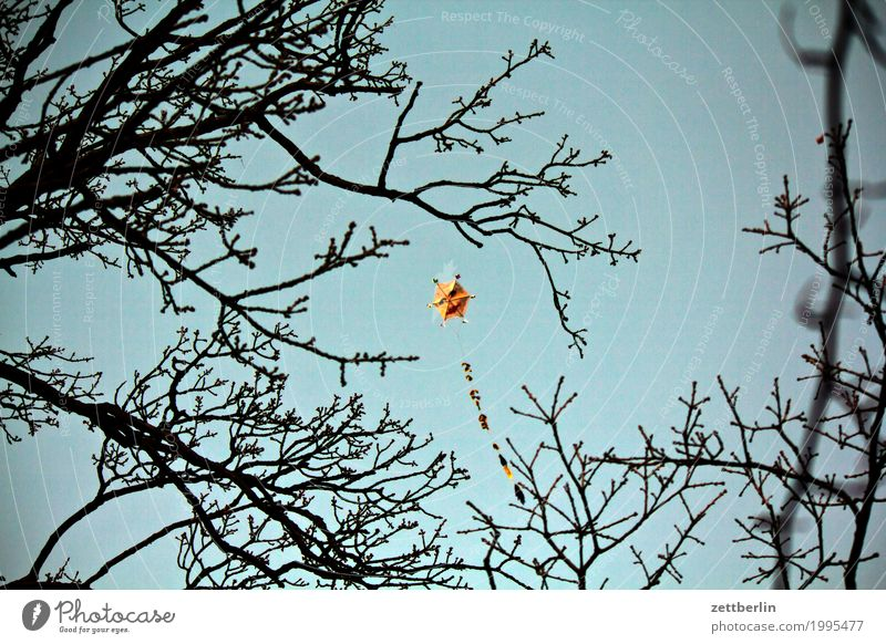 Drachen Abend Dämmerung Herbst Himmel Menschenleer Natur Textfreiraum Lenkdrachen Spielen Spielzeug fliegen fliegend steigen Wind wehen Sturm Ast Zweig Gesicht