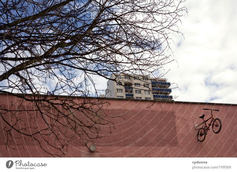 [HAL] I want to ride my Bicycle Lifestyle Stil Design Freizeit & Hobby Freiheit Umwelt Himmel Baum Stadt Architektur Mauer Wand Fassade Fahrrad einzigartig