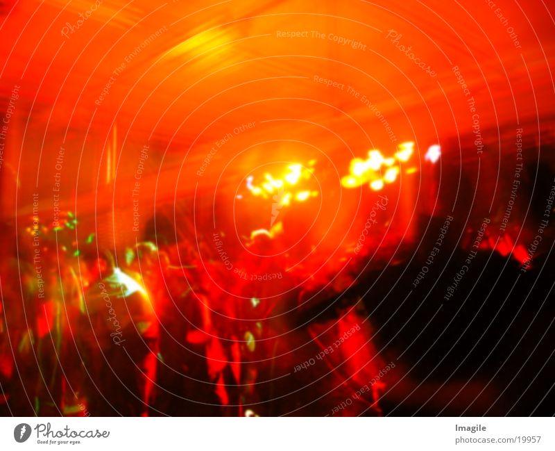Delirium Party rot Alkoholisiert Menschengruppe Unschärfe Feste & Feiern