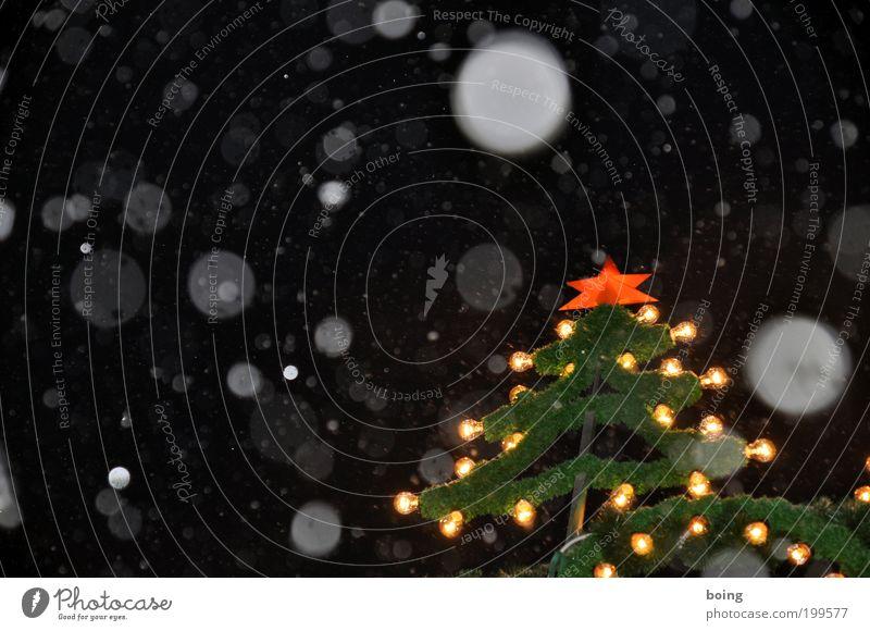 Violinkonzert Weihnachten & Advent Schneefall Stern (Symbol) Weihnachtsbaum Nachthimmel Weihnachtsdekoration Nachtleben Weihnachtsstern Weihnachtsmarkt Lichterkette Markt Schnee Textfreiraum links Weihnachtsbeleuchtung