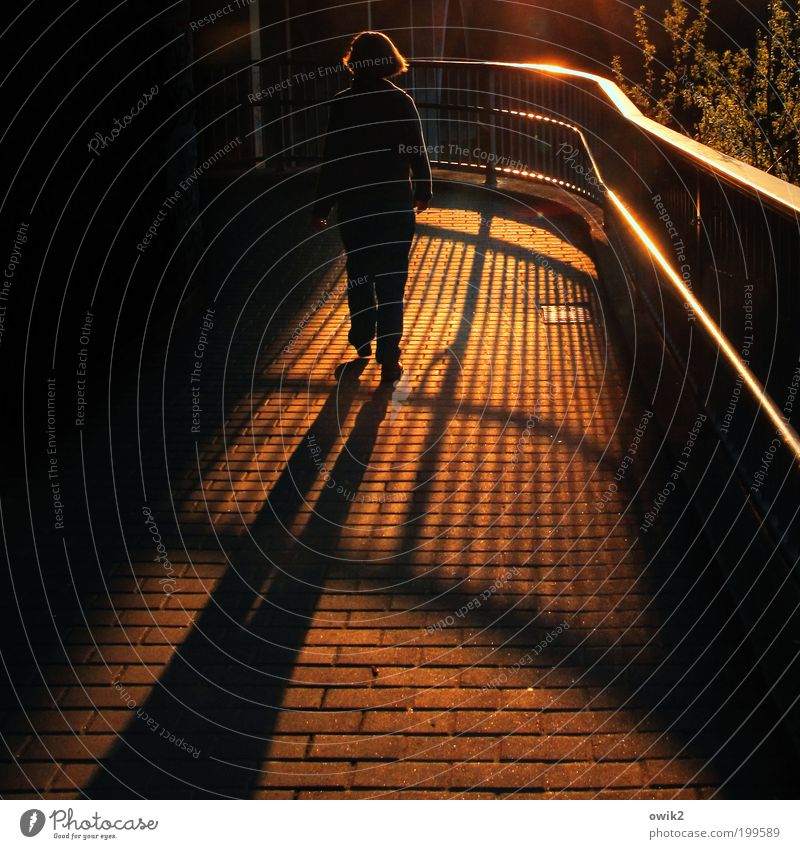 Abendspaziergang Mensch Frau ruhig Erwachsene Erholung Leben Wege & Pfade Stimmung Beleuchtung gehen leuchten Sicherheit Schutz Geländer Bürgersteig Fußweg
