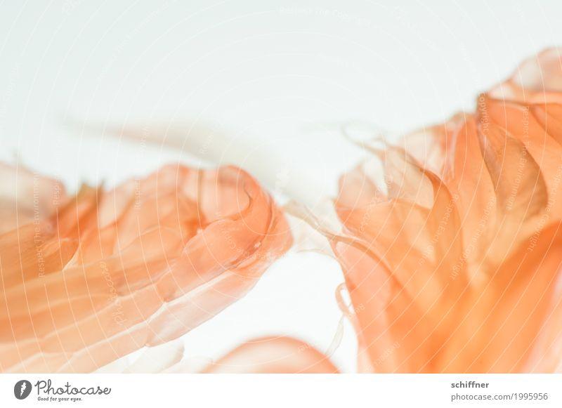 süß | ist anders I Lebensmittel Orange Ernährung Essen Vegetarische Ernährung Diät sauer Grapefruit Pomelo Frucht fruchtig Fruchtfleisch abstrakt