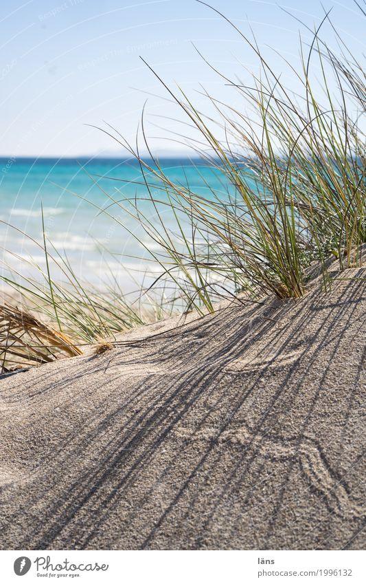 Durchsicht Himmel Natur Ferien & Urlaub & Reisen Sommer Wasser Sonne Landschaft Meer Erholung Ferne Strand Umwelt Küste Gras Freiheit Tourismus