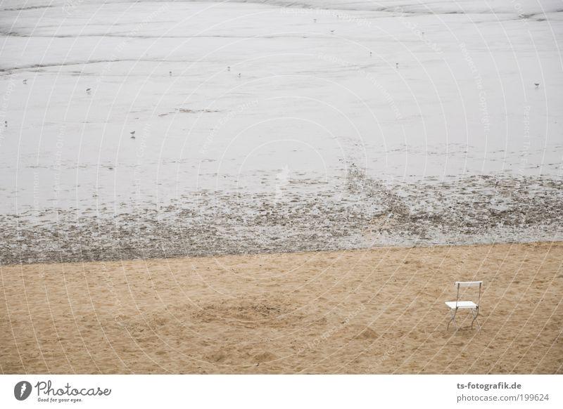 no Flut, no fun Meer Sommer Strand Ferien & Urlaub & Reisen ruhig Ferne Herbst Freiheit Regen Küste Ausflug Insel Tourismus Vergänglichkeit Möwe Nordsee