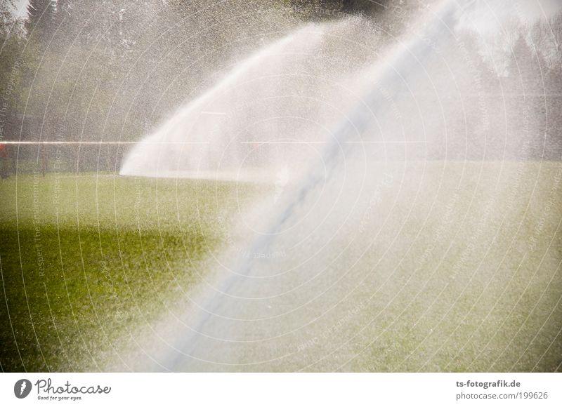Rasenballett III Sportstätten Fußballplatz Stadion Technik & Technologie Natur Urelemente Wasser Wassertropfen Sommer Wetter Schönes Wetter Wärme Dürre Baum
