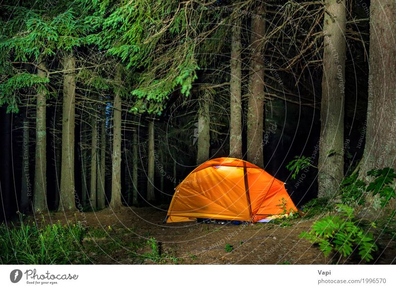 Camping im Wald Erholung Freizeit & Hobby Ferien & Urlaub & Reisen Tourismus Ausflug Abenteuer Sommer Sommerurlaub Berge u. Gebirge wandern Lampe Klettern