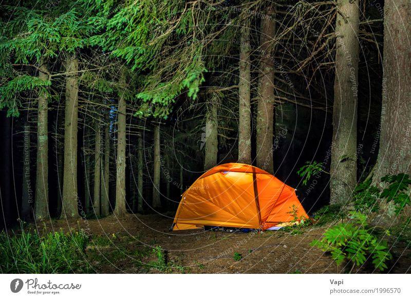 Camping im Wald Natur Ferien & Urlaub & Reisen Pflanze Sommer grün Baum Landschaft rot Erholung dunkel Berge u. Gebirge schwarz gelb Lampe Tourismus