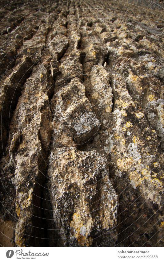 Steinacker Natur Ferne Stein Linie Feld Erde Beton Boden fest Zusammenhalt Ackerbau Furche hart Gletscherspalte rustikal Stabilität