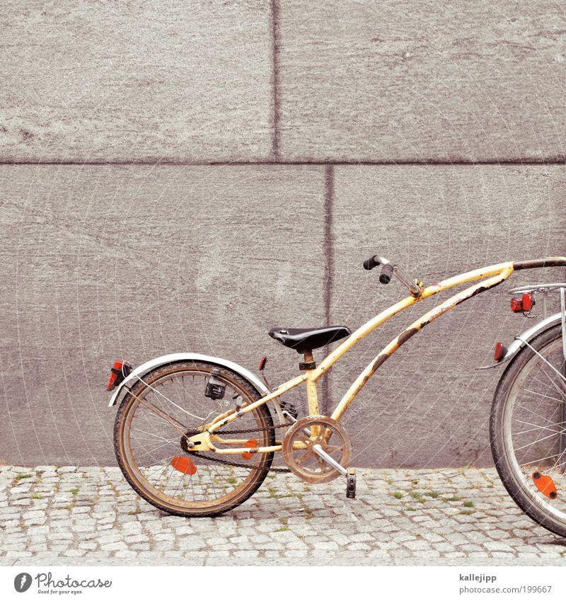 follow me Jugendliche Freude Straße Stil Kindheit Fahrrad Freizeit & Hobby außergewöhnlich Verkehr Lifestyle einzigartig Verkehrswege Rahmen Kindererziehung