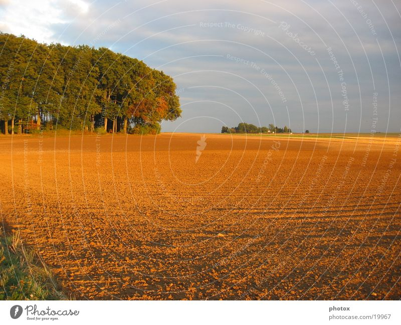Herbst im Hesseland Himmel Sonne Wald Feld Abenddämmerung