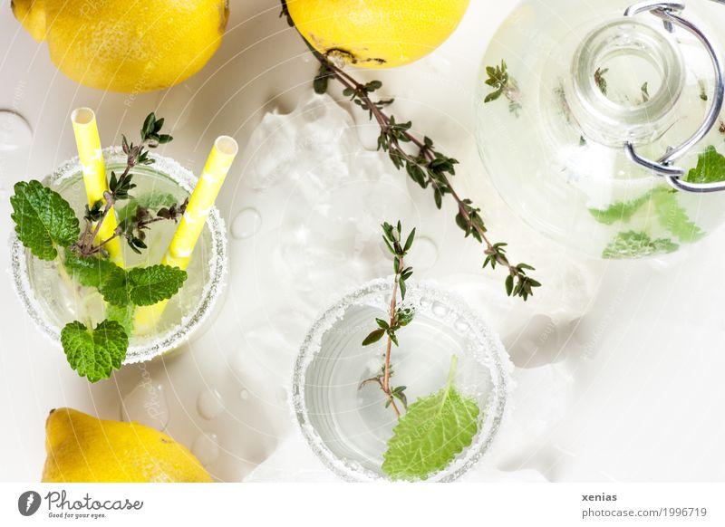 Zitronenlimo mit Minze und Thymian selbstgemacht Frucht Kräuter & Gewürze Minzeblatt Zucker Getränk trinken Erfrischungsgetränk Trinkwasser Limonade Flasche