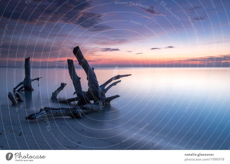 Blaue Stunde am Strand harmonisch Wohlgefühl Zufriedenheit Erholung ruhig Ferien & Urlaub & Reisen Ferne Meer Insel Landschaft Sand Wasser Himmel Horizont