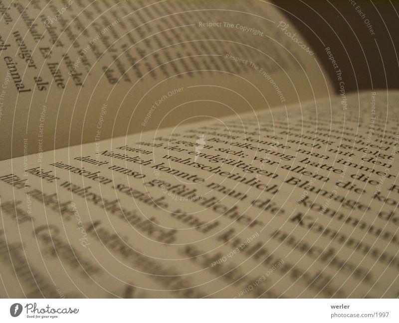 Buch Papier Nahaufnahme Typographie Dinge Seite Detailaufnahme Makroaufnahme