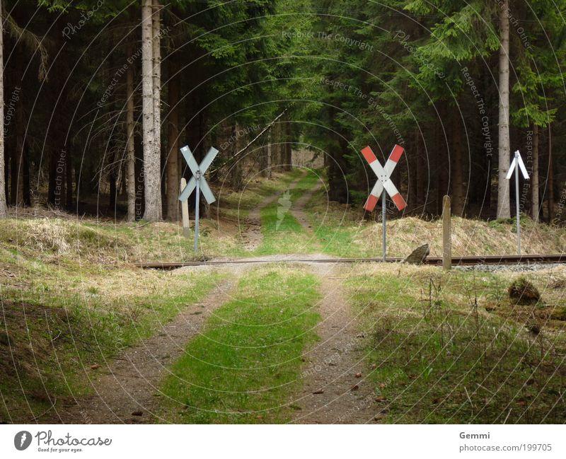 Train Crossing Natur Baum grün Ferien & Urlaub & Reisen Einsamkeit Ferne Gras Frühling Landschaft braun wandern Umwelt Schilder & Markierungen Eisenbahn Ausflug
