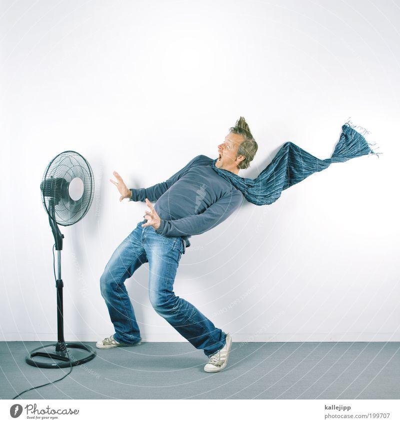westerwlle mit gegenwind Mensch Mann Erwachsene Wärme Stil Wind Wohnung frisch Häusliches Leben Lifestyle Jeanshose Hemd Sturm schreien Richtung Friseur