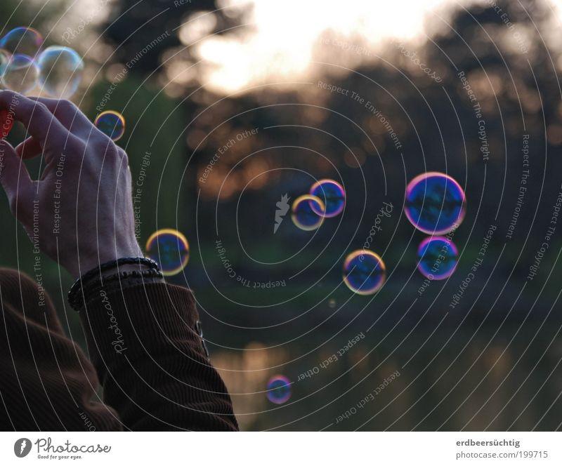 Freitagabendbeschäftigung Mann Natur Hand Erwachsene Erholung Leben Freiheit Stimmung Zufriedenheit Freizeit & Hobby fliegen 18-30 Jahre Lebensfreude genießen Schweben Leichtigkeit