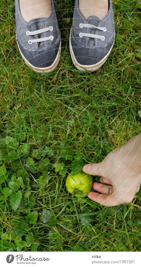 saurer Apfel Frucht Bioprodukte Vegetarische Ernährung Diät Freude Glück sparen Gesunde Ernährung Sinnesorgane Sommer Gartenarbeit Mensch feminin Junge Frau