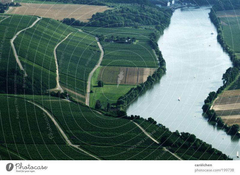 Flusslauf Umwelt Natur Landschaft Wasser Sommer Klima Feld grau grün silber Weinberg Weinbau Neckar schwäbisch geschwungen Lauflinie Wege & Pfade Luftaufnahme