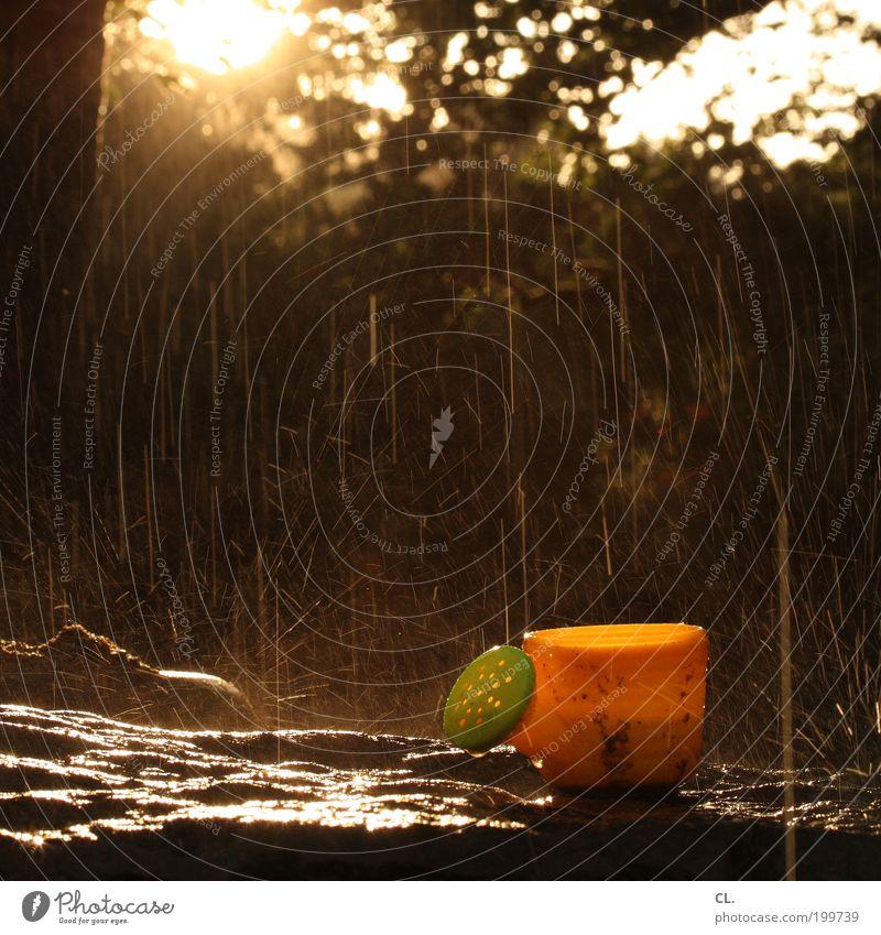 gießkännchen Natur Ferien & Urlaub & Reisen Sonne Sommer gelb klein Garten Park Regen Kindheit nass Wassertropfen niedlich Tropfen Spielzeug Unwetter