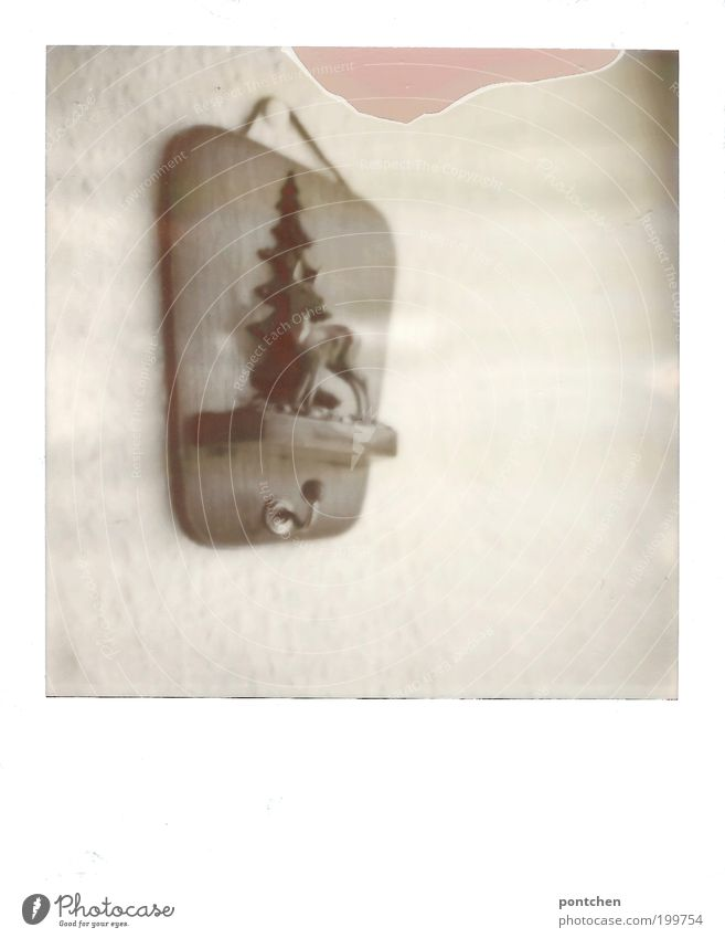 Der neue! alt Tier Wand Holz Raum Wohnung Kitsch Dekoration & Verzierung Kultur Bild Häusliches Leben Tanne trashig Sammlung Tradition