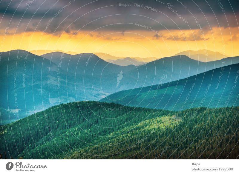 Sonnenuntergang über blauen Bergen Himmel Natur Ferien & Urlaub & Reisen Sommer Farbe grün weiß Baum Landschaft rot Wolken Wald Berge u. Gebirge schwarz gelb