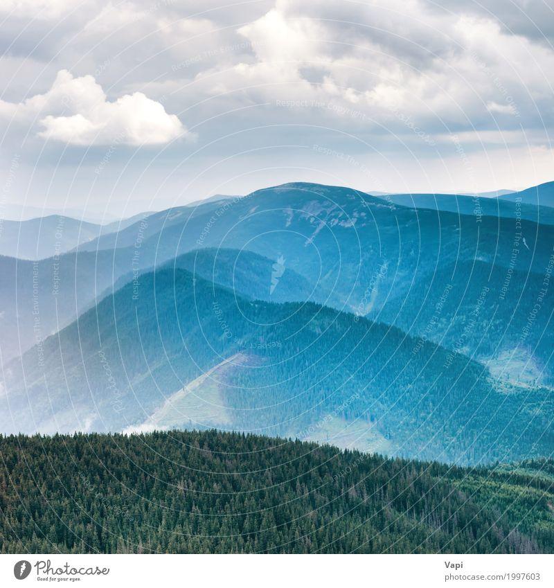 Blaue Berge bedeckt mit grünem Wald Himmel Natur Ferien & Urlaub & Reisen blau Sommer Farbe weiß Baum Landschaft Wolken Ferne Berge u. Gebirge Umwelt Frühling