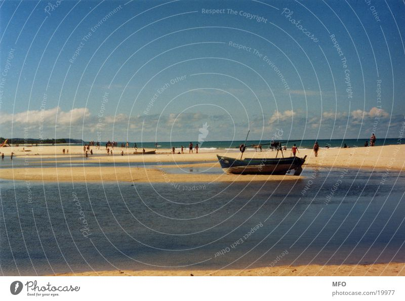 strand von trancoso (brasilien) Sonne Meer Strand Wind Brasilien Südamerika