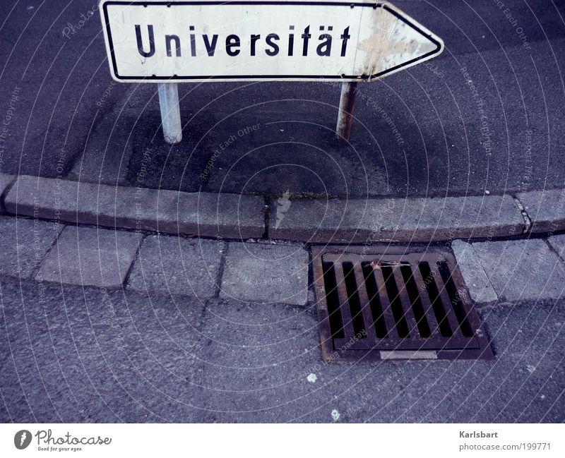 wo bitte gehts denn hier zur ... ? weiß Straße Wege & Pfade Studium Lebenslauf Zukunft Bildung Pfeil Wissenschaften Erwachsenenbildung Verkehrswege Richtung