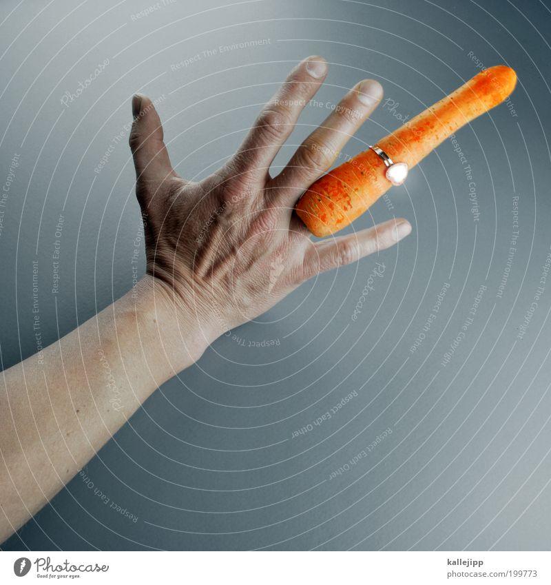 3000_endless love Lebensmittel Gemüse Ernährung Fingerfood Lifestyle elegant Stil Design Arme Hand 1 Mensch Accessoire Schmuck Ring glänzend schön Möhre