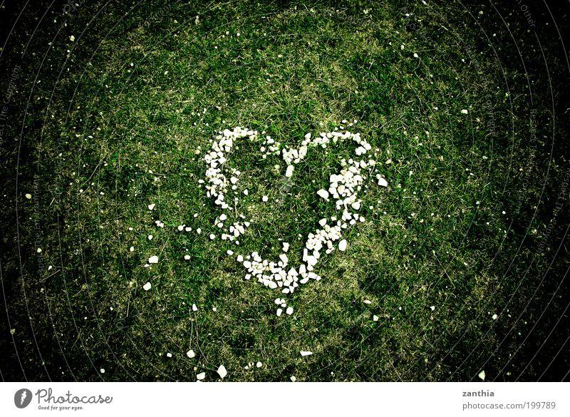 <3 Natur weiß grün Pflanze Sommer Wiese Gefühle Gras Frühling Glück Zusammensein Herz Luftaufnahme Romantik Warmherzigkeit Zeichen