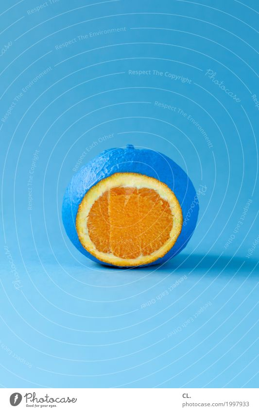 farbfood Lebensmittel Frucht Orange Ernährung Gesunde Ernährung Kunst Kunstwerk Farben und Lacke ästhetisch außergewöhnlich Gesundheit einzigartig lecker rund