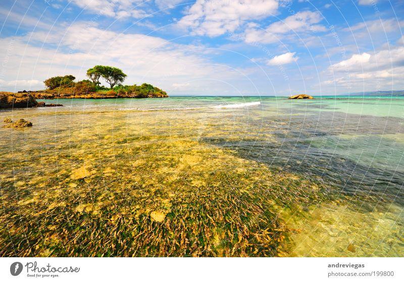 Karibisches Meer Ferien & Urlaub & Reisen Tourismus Ausflug Kreuzfahrt Expedition Sommer Sommerurlaub Sonne Sonnenbad Strand Insel Natur Landschaft heiß blau