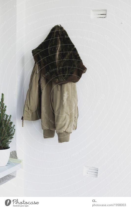 jacke und bäumchen Pflanze Winter Wand Herbst Mauer Mode Wohnung Häusliches Leben Dekoration & Verzierung Balkon Jacke Alltagsfotografie Grünpflanze