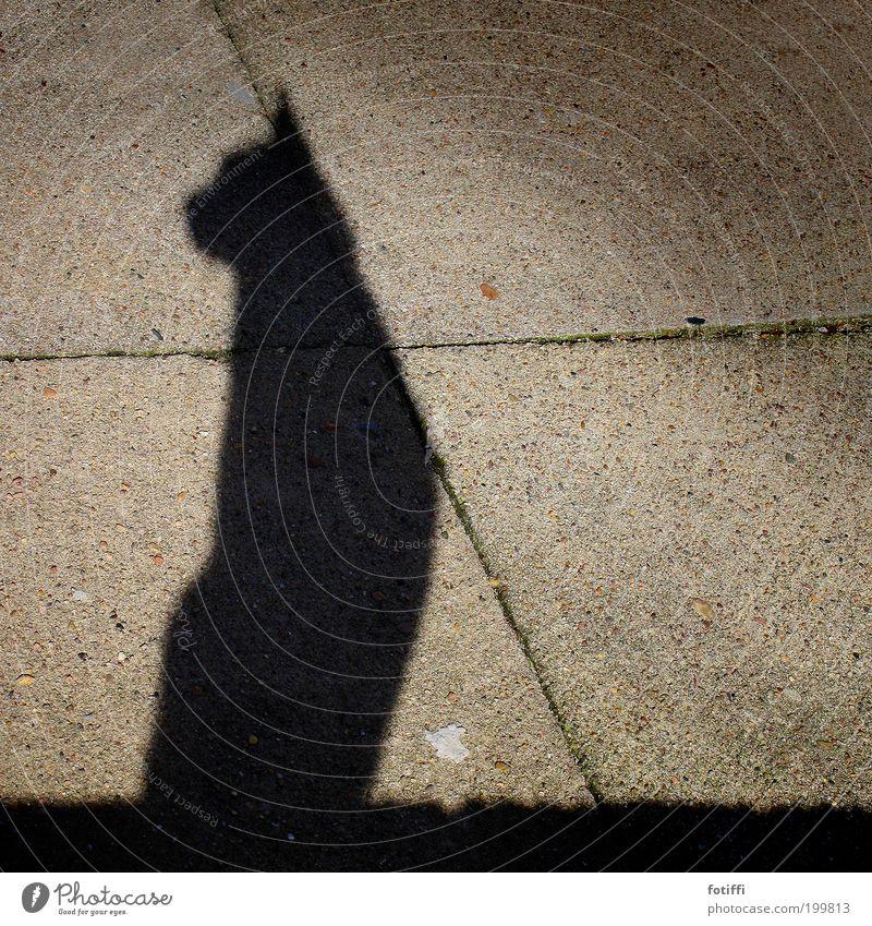 a Katze schön Tier schwarz Stein elegant sitzen Beton ästhetisch Körperhaltung beobachten Sonnenbad hocken Ägypten rebellisch erhaben