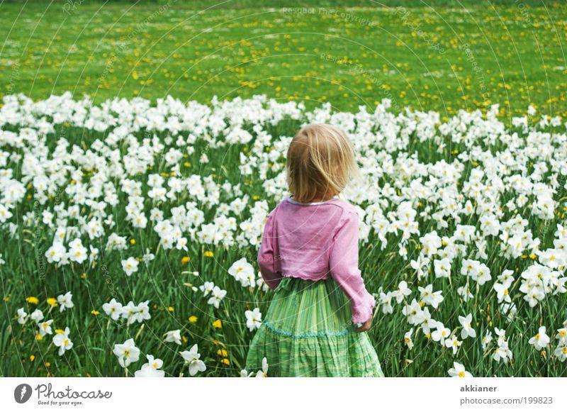 Und wo ist jetzt der Osterhase? Mensch Kind Mädchen Kindheit Rücken Arme Umwelt Natur Landschaft Pflanze Frühling Klima Wetter Schönes Wetter Wärme Blume Blüte
