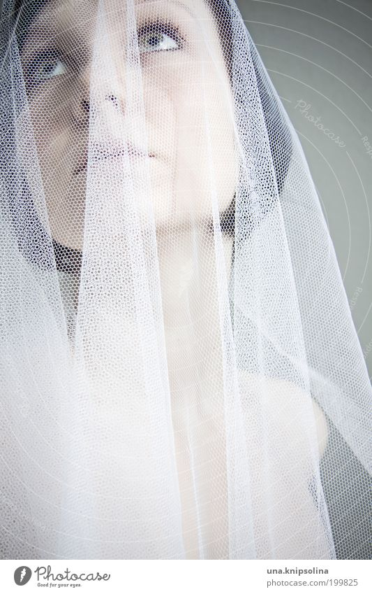 mariée Mensch Frau Jugendliche weiß schön Erwachsene feminin Mode träumen Junge Frau 18-30 Jahre Bekleidung Hochzeit Hoffnung verstecken Kostüm