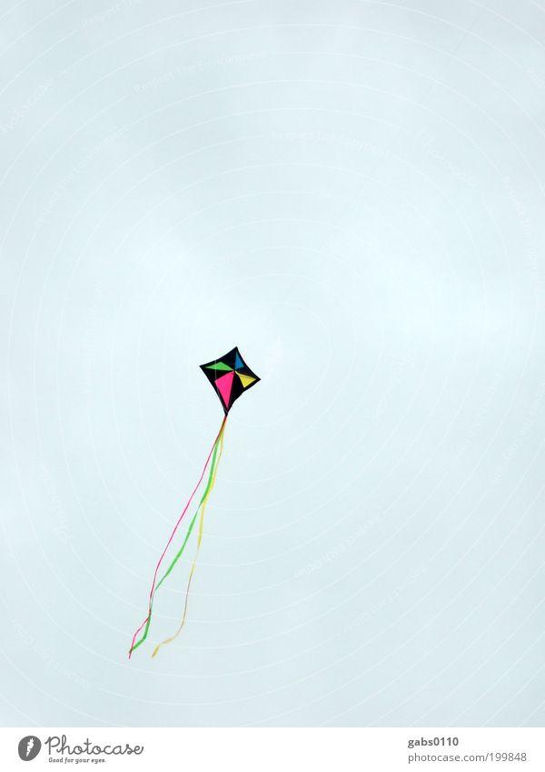 hoch hinaus Himmel Freude Sommer Wolken Ferne Herbst Spielen Freiheit Umwelt oben Luft Wetter Freizeit & Hobby Wind fliegen Kraft