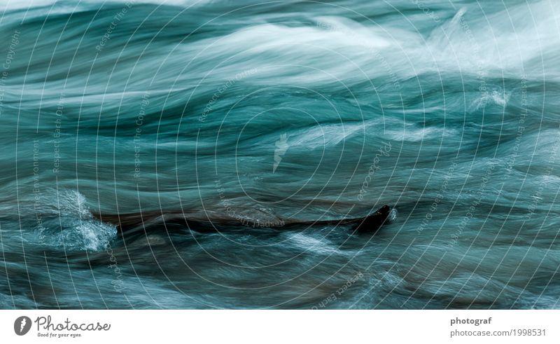 Fluss,Wasser Leben sprechen Kunst Umwelt Natur Landschaft Pflanze Tier Luft Herbst Baum Wald See Bach Wasserfall Fisch Muschel Holz Wachstum Gefühle erde boden