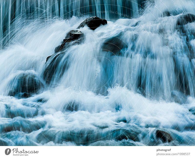 Fluss,Wasserfall,Wasser Leben sprechen Kunst Umwelt Natur Landschaft Pflanze Tier Luft Herbst Baum Wald See Bach Käfer Fisch Muschel Holz Wachstum erde boden